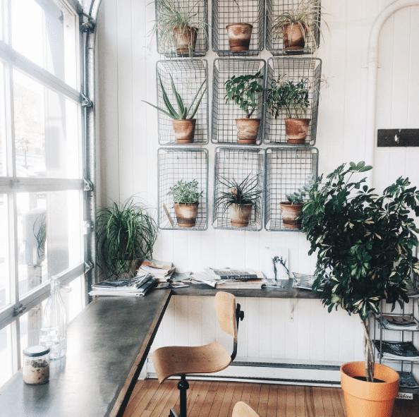 Plus beaux cafés montreal cafe sfouf