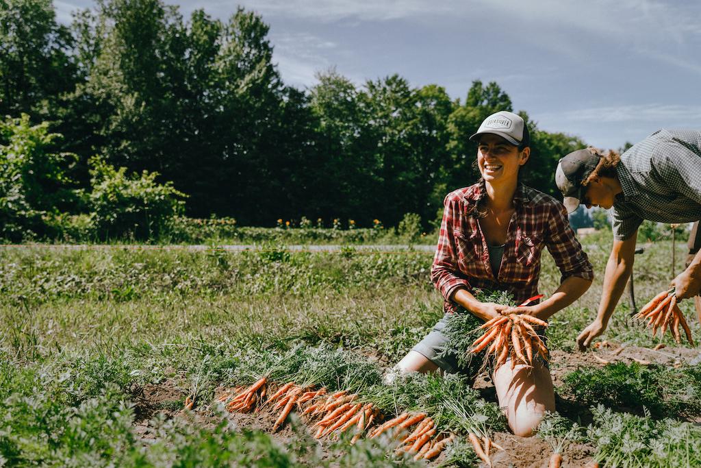 réseau des fermiers de famille