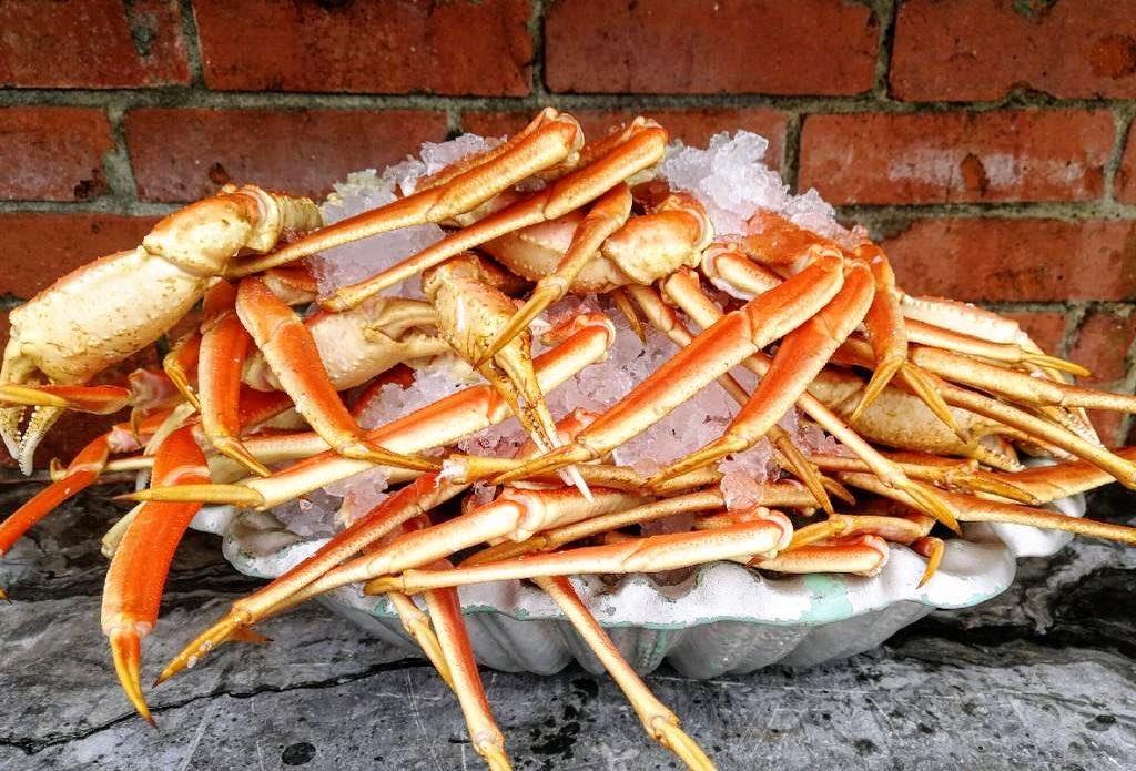 Crabe des neiges